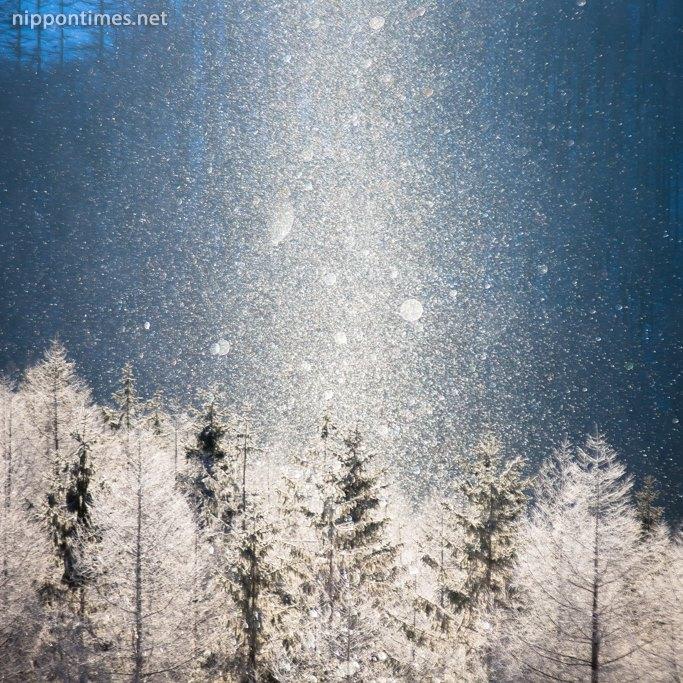 الظاهرة النادرة المعروفة باسم غبار الألماس في هوكايدو شمال اليابان