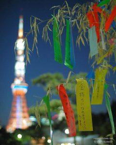 أوراق تانزاكو الملونة في طوكيو | عبر المصور Dainosuke60
