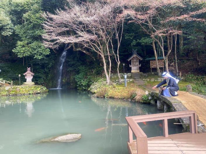 في ضريح إيزومو تايشا